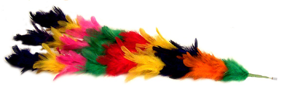 Feather Plume for Cane
